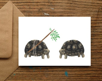 Mistletoe Tortoise | Christmas Cards