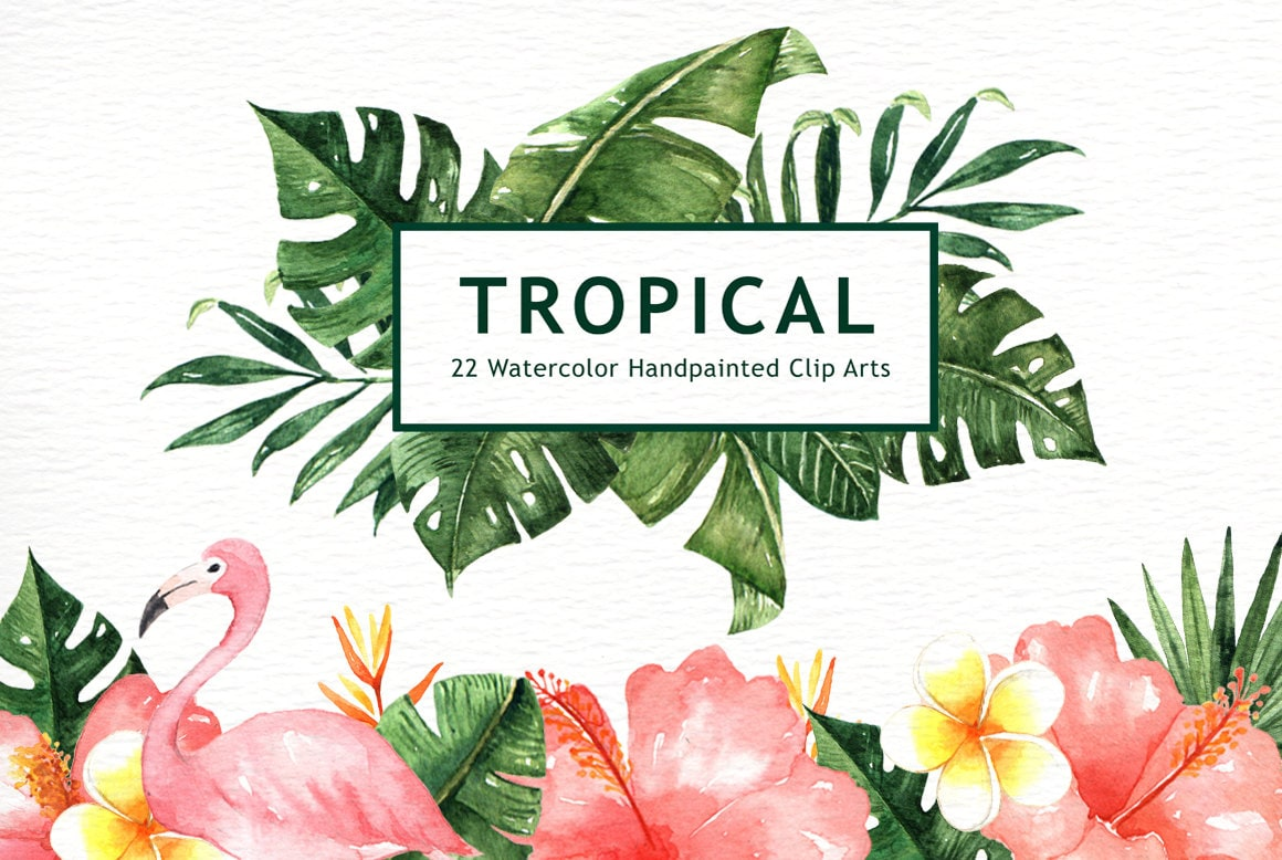 Tropical Leaves Watercolor Clipart, watercolor flower ...