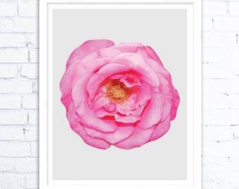 Printable Flower, Flower Print, Pink Flower Art Wall, Garden Art, Download Prints,Nature Art Prints, Nature Digital Download Art