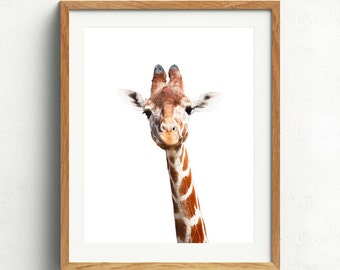 Giraffe Print, Giraffe Portrait, Nursery Animals, Giraffe Nursery Animal, Baby Animal Prints