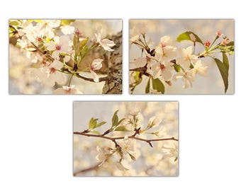 Nursery, Cherry Blossom, photograph, art, wall, decor, nursery, girl's room, decor, flower, prints, shabby chic, nature, mother's day, macro