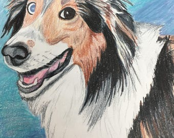 Personalized Pet Colored Pencil Drawings