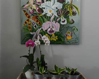Orchidaceae,orchid oil painting,hand painted orchid,