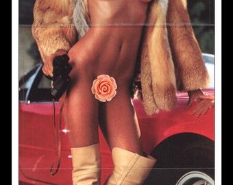 "Mature Playboy March 1981 : Playmate Centerfold Kymberly Ellen Herrin Gatefold 3 Page Spread Photo Wall Art Decor 11"" x 23"""