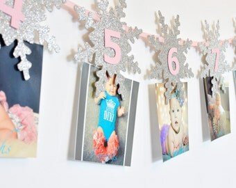 Snowflake Milestone Banner, Monthly Photo, First Year, Silver Snowflakes, Birthday Party Decor, Photo Prop, Winter ONEderland