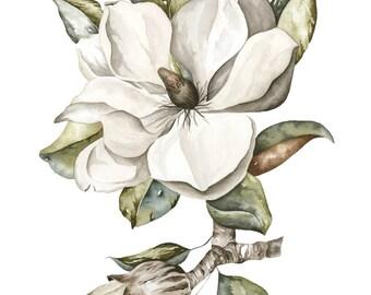 Vintage Watercolor Magnolia