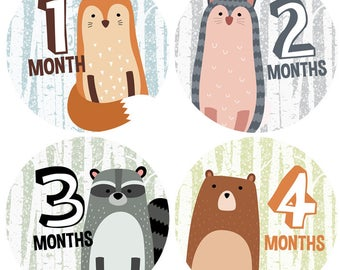 Baby Monthly Milestone Stickers - Woodland Animal Baby Stickers for Boy - 1 to 12 months - Milestone Stickers - Wood Land