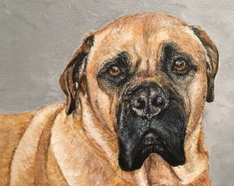 Pet Portrait on canvas, Commissioned