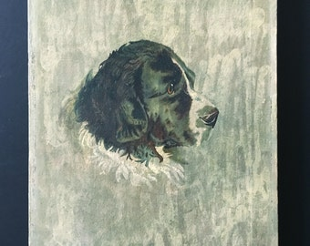Signed Victorian oil painting of a Newfoundland dog, antique oil on canvas, dog portrait circa 1870
