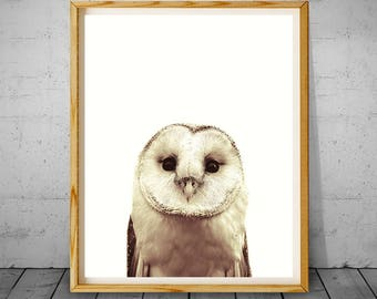 Owl Print, Printable Owl, Bird Wall Decor, Woodlands Nursery Decor, Animal Photography, Owl Art Photo, Owl Nursery Art, Wilderness Wall Art