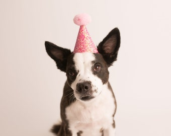 Dog Party Hat || Animal Birthday Party Hat || Pet Cat Puppy Kitten Pig Party Hat || Pink + Light Pink