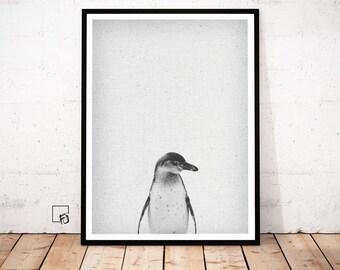 Penguin Print, Penguin Wall Art, Penguin Animal Print, winter black white Decor, penguin printable Poster, penguin Download, Penguin Nursery