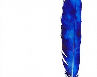 Indigo print - watercolour - A4/A5 print - original feather painting