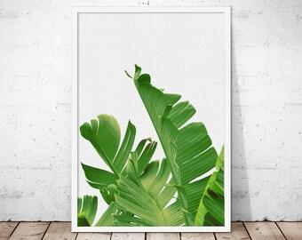Banana Leaf Wall Art, Tropical Art, Palm Leaf Wall Art, Tropical Printable, Palm Wall Art, Palm Leaves Print, Palm Poster, Banana Leaf Photo