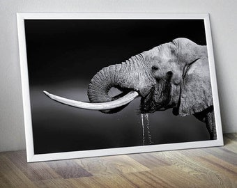 Elephant Art Elephant Wall Art Elephant Wall Decor Elephant Poster Elephant Print Elephant Photo Elephant Decor Elephant Large Photo Prints