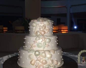 Sea Shell Decoration Set