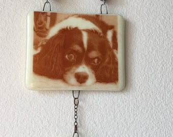 Cremation wall hanging with your pet's picture and pet's ashes