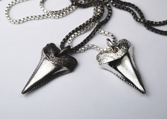 Sublime Sterling Silver Shark Tooth Necklace