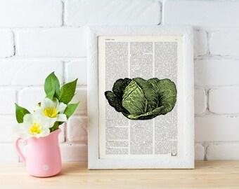 Summer Sale Cabbage Illustration Print on Vintage Dictionary Book art nature vegetable art home decor wall art BFL088