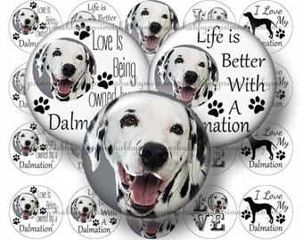 "Dog, Dalmation, 2"", 1.5"", 1.25"", Circles, Digital Collage Sheets, Animal, Instant Download, Digital Download, Pendants, Cabochons (2017-1)"