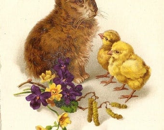 Easter Bunny Rabbit with Baby Chicks Violets & Yellow Flowers Antique Vintage French Postcard Post Card, Joyeuses Paques