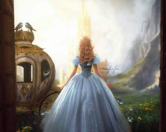 Instant Download - LS Cinderella Overlay and Photoshop Action Set