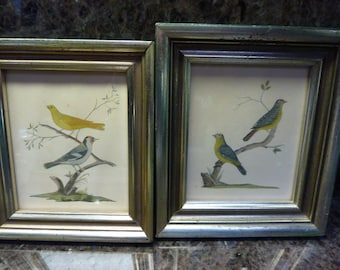 Antique Hand Painted Framed Bird Pictures