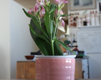 ceramic flower vase , handmade