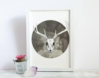 Stag Skull | A4 Giclée Print
