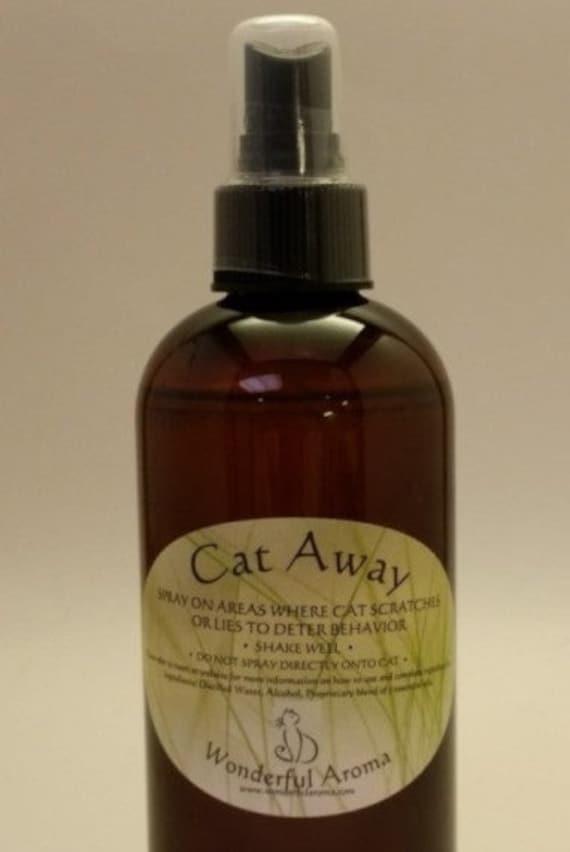 cat arthritis relief