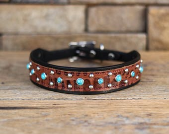Leather Dog Collar // Black and Brown w/ Turquoise Stones // Western Dog Collar