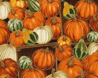 Pumpkins & Gourds Fabric; CM5206; Fat Quarter, 1/3 Yard, 1/2 Yard, By the Yard; Timeless Treasures; Autumn Bounty; Fall Fabric; Thanksgiving