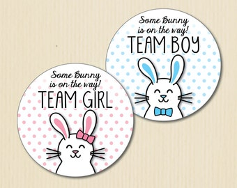 Bunny Gender Reveal Party Stickers, Team Boy, Team Girl, Spring Baby Shower, Easter, Team He, Team She, Team Pink, Team Blue, Dots, Rabbit