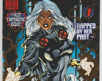 Storm #1 1st solo series 1996 Marvel Comic Book Foil Stamped Cover X-Men Comics 1990s Xmen Written by Warren Ellis Terry Dodson Artwork