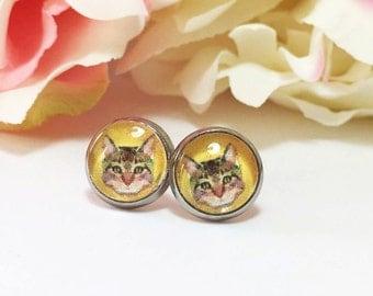 Cat Earrings, Cat Studs Earrings, Cat Jewelry, Glass Dome Cat Earrings, Animal Jewellery, Kitty Earrings, Kitten Studs, Gift for Cat Lover