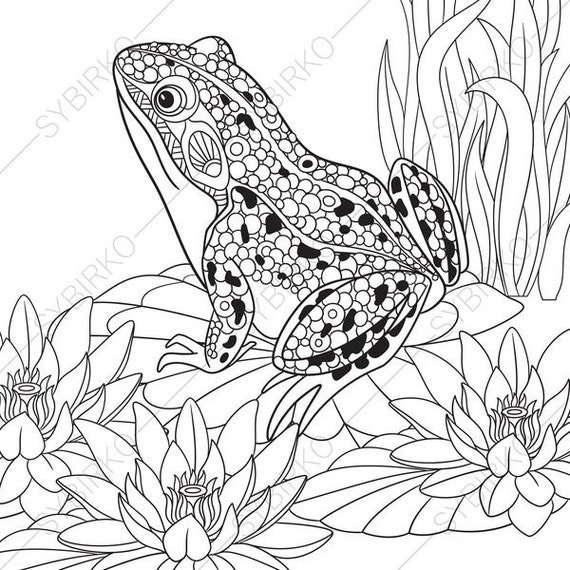 adult coloring pages frog zentangle doodle coloring book page for adults digital illustration instant download print - Frog Coloring Pages