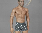 1/6th scale grey boxer briefs men's underwear with stars for: regular size action figures and Fashion Royalty male dolls