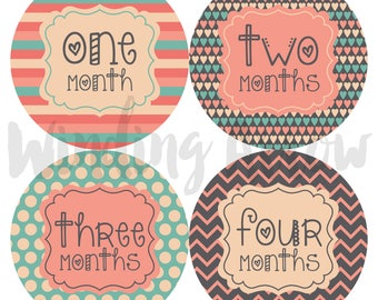 Baby Monthly Milestone Stickers Baby Girl Month by Month Sticker Baby Shower Gift First Year Belly Stickers 12 Months Pink Grey Blue Hearts