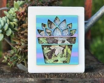 Succulent, succulent sign, wood decor, mixed media, laser cut, ombre, wood sign, Succulents, floral, Mother's Day