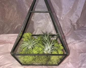 Geometric prism Terrarium
