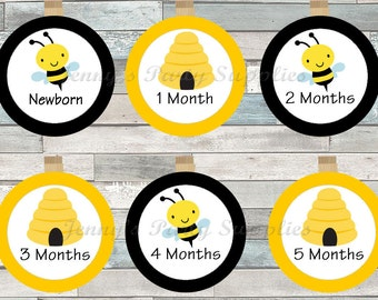 Bee First Year Banner Clips, Bee Photo Clip Banner, Baby First Year Photo Tags, Bee Clothespin Banner, Baby 12 Month Photo Banner