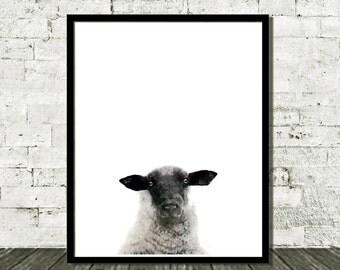 Digital Print, Instant Download, Sheep Print, Sheep Wall Art, Sheep Painting, Painting Watercolor, Watercolor Sheep, Sheep Art Print