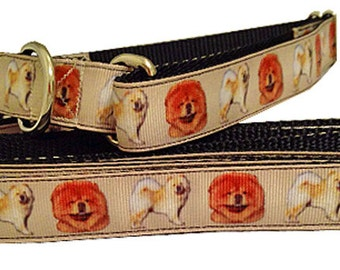 Chow Chow Dog Collar, Chow Dog Collar, Chow Chow Leash, Martingale Dog Collar