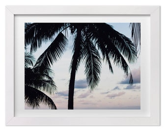 Tropical Print, Sunset in Belize, Nature Photography, Palm Tree Print, Tropical Art, Large Wall Decor, Landscape Photography, Custom Sizes