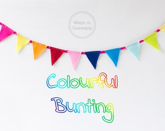 Bunting guinea pig photoshoot accessories