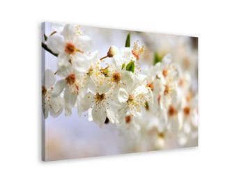 White Apple tree Blossom - Framed Wall Art Canvas Print // 6 Sizes - medium to large // High Quality // Free, Fast & Safe Shipping