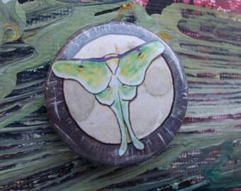 "Luna Moth 1.25"" Pinback Button"