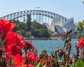 Sydney Harbor/Opera House Original Photography 8x10