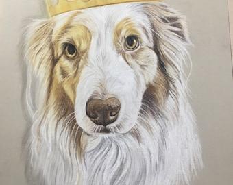 Pastel pencil portrait Din4