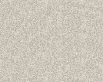 Gray Scratch Quilt Fabric - Ava Rose - Riley Blake Designs